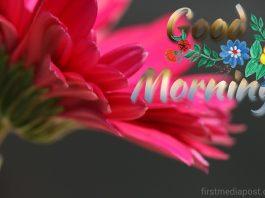 good morning firstmediapost